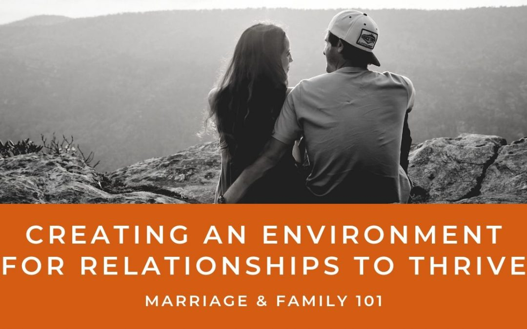 Lesson 1- Creating An Environment For Relationships To Thrive (Rent)