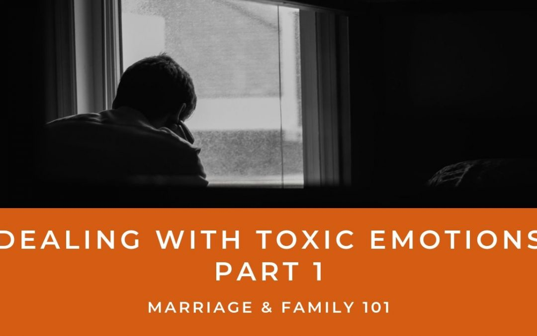 Lesson 12- Dealing With Toxic Emotions- Part 1 (Unlimited)