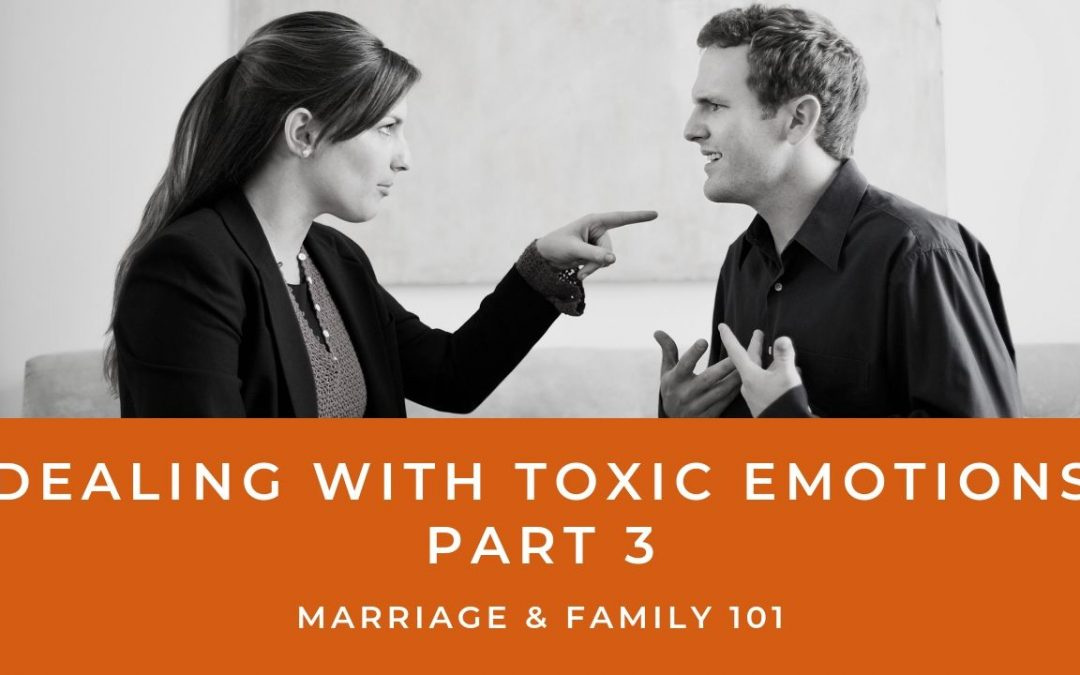 Lesson 14- Dealing With Toxic Emotions- Part 3 (Unlimited)