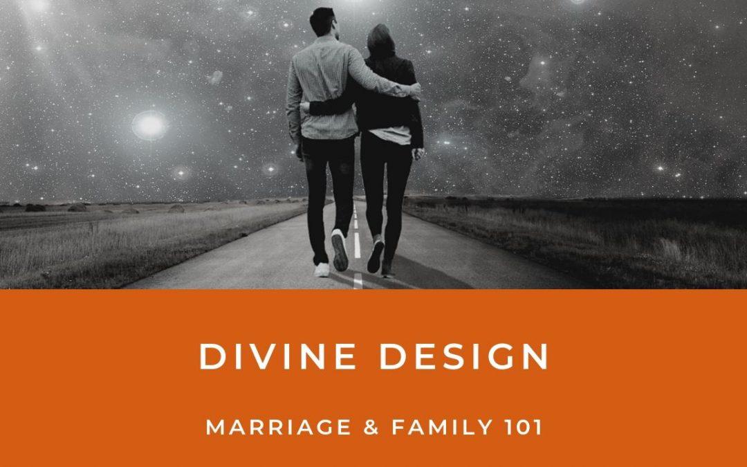 Lesson 10- Divine Design (Unlimited)