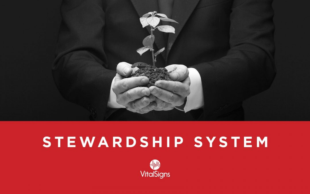 Lesson 6 – Stewardship System (Unlimited)