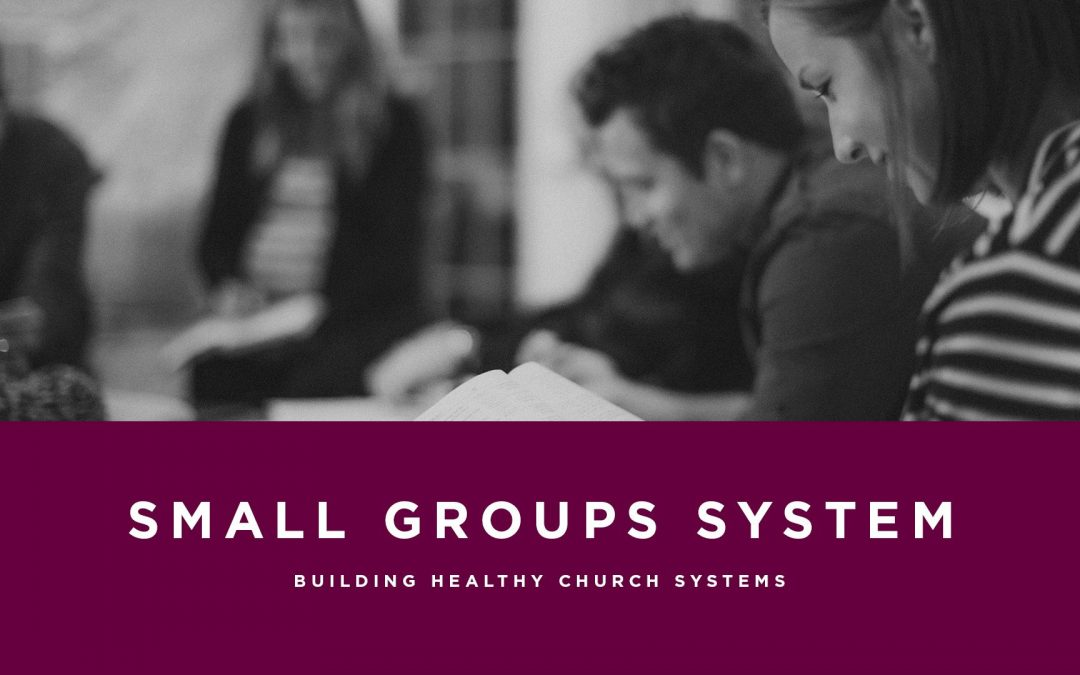 Lesson 7- Small Group System (Rent)
