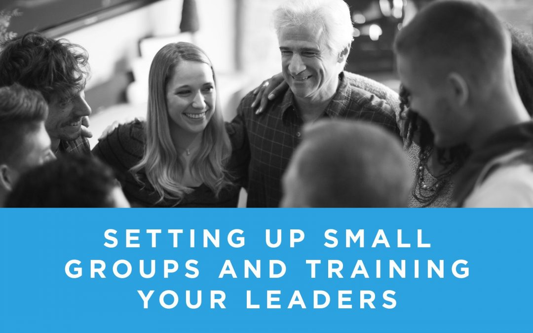 Setting Up Small Groups and Training Your Leaders (Rent)
